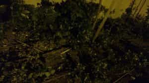 צילום במצב לילה