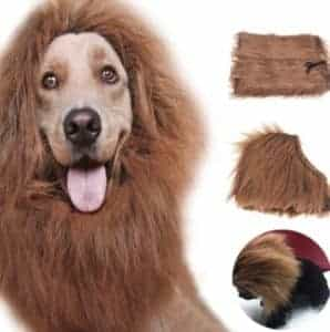 2018 11 21 13 07 40 Pet Costume Cat Clothes Fancy Dress Up Lion Mane Wig for Cats Small Large Dogs 1