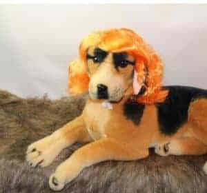 2018 11 21 13 31 59 Cat Dog Yellow Mane Wig Artist Cat Costume Hat Hair Cat Pet Puppy Cosplay Wig Ho