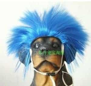 2018 11 21 13 33 16 Tangpan Short Blue Pet Cat Dog Wig Pet Head Christmas Halloween Party Accessorie