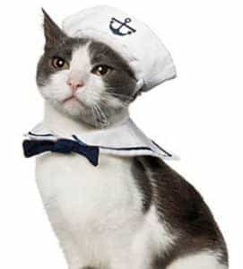 2018 11 22 11 41 43 Funny Pet Cat Costumes Cat Dog Rabbit Apparel Clothes For Halloween Cosplay Navy