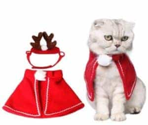 2018 11 22 11 43 56 New Pet Costume For A Cat Cloaks Mantle With Buckhorn Suit Set Clothes For Cats