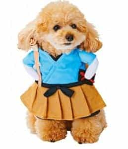 2018 11 22 11 57 17 Funny Cat Costume Uniform Suit Cat Clothes Costume Puppy Clothes Dressing Up Sui