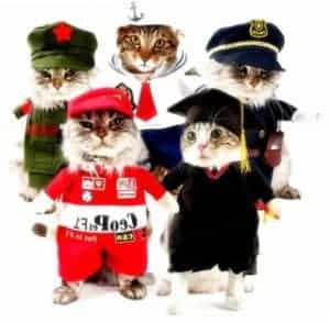 2018 11 22 12 05 29 Funny Cat Clothes Costume Sex Nurse Policeman Suit Clothing For Cat Cool Hallowe
