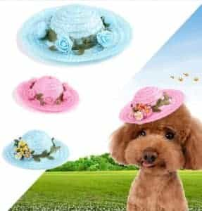 2018 11 25 10 16 21 ERPPET Pet Dog Caps Simple And Cute Flower Decoration Breathable Puppy Cat Hat S
