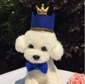 2018 11 25 11 39 29 New pet party birthday hats pet dog and cat birthday crown and childrens birthd